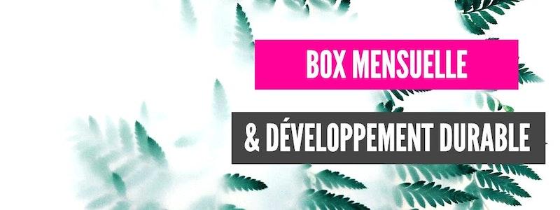 image principale de l'article Pourquoi les box mensuelles dans le domaine du développement durable sont-elles en vogue ?